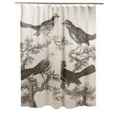 Found it at Wayfair - Ornithology Shower Curtain