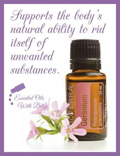 How to use doTERRA Geranium essential oil. Tips and usage for essential oils, and online essential oil classes! Doterra Essential Oils, Natural Essential Oils, Essential Oil Blends, Natural Oils, Doterra Geranium, Geranium Essential Oil, Essential Oils Guide, Young Living Oils, Diffuser Blends