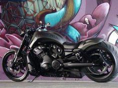 """Harley V Rod custom """"Australia"""" by DGD Custom Harley Davidson Breakout Custom, Harley Davidson Night Rod, Harley Davidson Images, Harley Davidson Road Glide, Harley Davidson Bikes, Custom Sportster, Custom Harleys, Custom Bikes, Night Rod Custom"""