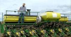 Produtores apostam há quinze anos no sistema de rotação de culturas
