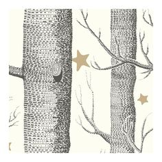 Cole & Son Wallpaper Woods & Stars Wallpaper (7.295 RUB) ❤ liked on Polyvore featuring home, home decor, wallpaper, backgrounds, art, filler, pattern wallpaper, gold home accessories, gold tree and black home decor