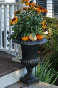 Celebrating Fall @ Casa del Empty Nesters - Preppy Empty Nester F