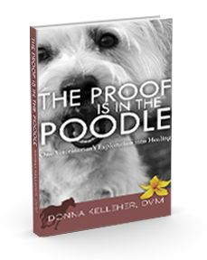 """The Proof is in the Poodle,"" by Donna Kelleher, DVM 