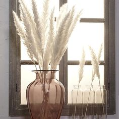 15 Pcs Bulrush Natural Dried Small Pampas Grass Phragmites Artificial Plants Wedding Flower Bunch for Home Decor Fake Flowers Fake Plants Decor, Plant Decor, Fake Flowers Decor, Dried Flower Bouquet, Dried Flowers, Grass Decor, Decoration Plante, Bunch Of Flowers, Artificial Plants