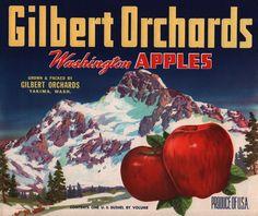 Gilbert Orchards apple crate label, Gilbert Orchards (Yakima, Washington)