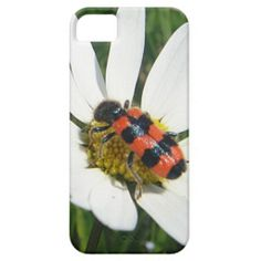 Red-black touched beetle on daisy iPhone 5 cover by fotosbykarin #iphonecovers #cases #beetle #cute #flowers #white #popular #lovely #fotosbykarin #Zazzle #gifts #KarinRavasio #k-ravasio