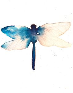 blue and gold dragonfly. original watercolour painting by AMOMA, £20.00