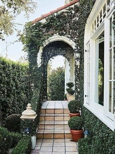A tiled path lined with potted boxwoods leads to an enchanting entrance covered in creeping fig vines and ivy.