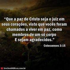 Colossenses 3:15