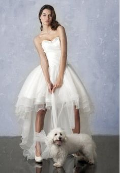Organza Strapless Sweetheart A-line Cute High-low Wedding Dress - Bride - WHITEAZALEA.com