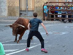 Santacara: ToroPasion (4) Goats, Animals, September, Animais, Animales, Animaux, Animal, Goat