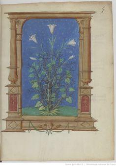 Poésies de « maistre ELOY DU MONT, dict COSTENTIN ». | Gallica