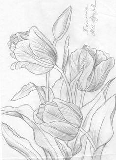 ru / A photo # 42 - drawings - ninmix - # drawings Flower Line Drawings, Flower Sketches, Pencil Art Drawings, Drawing Sketches, Drawing Flowers, Sketching, Tulip Drawing, Tulip Painting, Fabric Painting