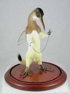 Taxidermie sous LSD
