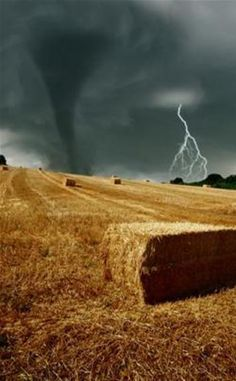 Lighting & Tornado over field of baled wheat straw. Tornados, Thunderstorms, Weather Storm, Wild Weather, All Nature, Science And Nature, Natural Phenomena, Natural Disasters, Fuerza Natural
