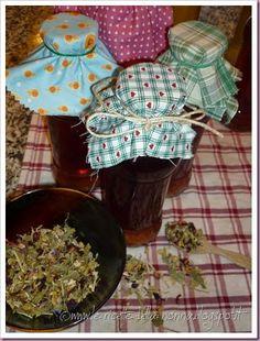 Le Ricette della Nonna: Infuso di erbe e frutti con mastazzola di Soriano