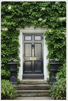 Black & brass door, antique urns, granite steps, bluestone walk and hydrangea ivy - welcome to beautiful New England my darlings!