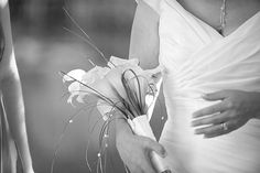 Bouquets photo by photosusan on Weddingbee. Wedding Stuff, Wedding Ideas, Bouquet, Inspiration, Biblical Inspiration, Bouquets, Wedding Ceremony Ideas, Inspirational