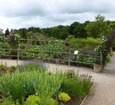immaculate kitchen garden