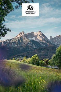 Schön langsam wird alles wieder grün und erblüht. Aber wir bleiben daheim! #stayathome Mountains, Nature, Travel, Hello Spring, Nice Asses, Naturaleza, Viajes, Destinations, Traveling