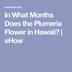 In What Months Does the Plumeria Flower in Hawaii? | eHow