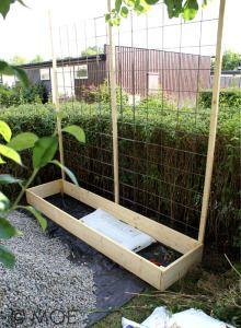 39 Easy and Cheap DIY Trellis & Raised Garden Design - FashDeco Building Raised Garden Beds, Cheap Raised Garden Beds, Garden Trellis, Diy Trellis, Balcony Garden, Indoor Garden, Garden Planning, Garden Inspiration, Organic Gardening