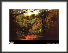 The Lost Forest Framed Print By Holley Jacobs