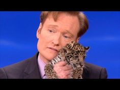 Animal Videos: Conan O'Brien + Jaguar Cubs + Binturong = SQUEEEEEEEE!1!!!
