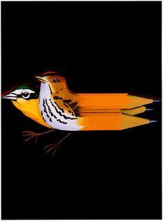 Ed Ruscha - Birds, Pencils