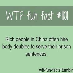#wtffunfacts
