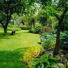 Bazą tego ogrodu są drzewa owocowe - rabaty ozdobne założono tu poza zasięgiem koron