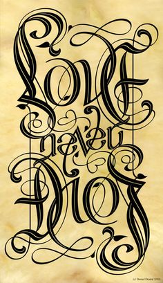 Ambigrams are Amazing <3