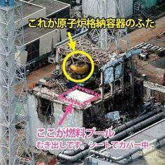 Fukushima, Coral Blue, Japan, Lost, Places, Japanese, Lugares