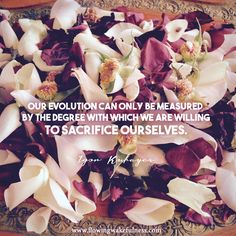 """""""Our evolution can only be measured by the degree with which we are willing to sacrifice ourselves. Consciousness, Evolution, Meditation, Spirituality, Canning, Quotes, Quotations, Knowledge, Home Canning"""