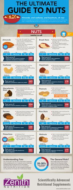The Ultimate Guide To Nuts. Almonds, Brazil nuts, Cashews, Hazel nuts, Macadamia nuts, Pea nuts, Pecans, Pine nuts, Pistachios, Walnuts. Best supplements from Zenith Nutrition. Health Supplements. Nutritional Supplements. Health Infographics