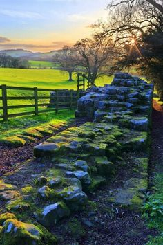 Hadrian's wall North Umberland England