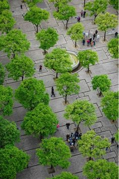 Cathedral Plaza, Seville, Spain. Visit the slowottawa.ca boards >> http://www.pinterest.com/slowottawa/