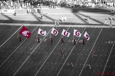 I will always be a coug. It's in my genes. :)