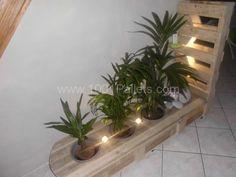 CIMG1051 600x450 Pallet vegetal furniture in pallet home decor pallet living room  with pallet plant stand pallet light