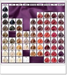 hair color chart of paul mitchell