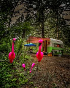 Vintage caravan and flamingoes
