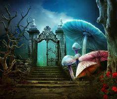 #psychedelic #psychedelics #psychedelicart #shrooms #mushrooms #dmt #acid #lsd #marijuana #maryjane #420 #trippy #thirdeye #illusion #imagination #fantasy #spiritual #spirituality #meditation #hippie #universe #galaxy #space #stars #moon #goodvibes #peace