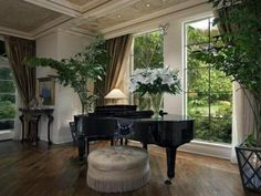 Large drapes, large vase, large plants, large ottoman.  We just need a larger room!