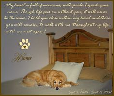 Wonderful poem. my redbone Luke crossed the rainbow bridge in January, i miss him everyday!