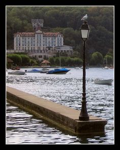 The gull, the lamp and the palace - Menthon-Saint-Bernard, Rhone Alpes