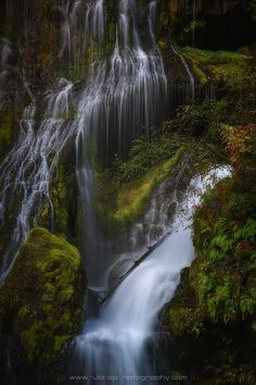 Adagio by Tula Top Gifford Pinchot National Forest, Washington Usa, Pacific Northwest, Nice View, Beautiful World, Around The Worlds, Waterfalls, Nature, Outdoor