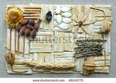 vintage collage of natural materials by Olga Selyutina, via ShutterStock