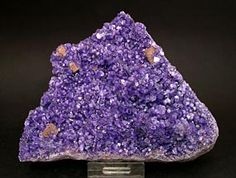 Amesite (Chromium rich) with Perovskite.