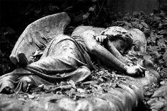Sleeping Angel - Highgate cemetery - London