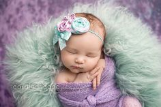 Love this head band prop. I also love the colours and the pose of this baby for newborn photography.
